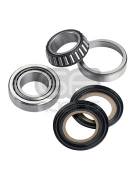 Steering Head Bearing and Seal Kit